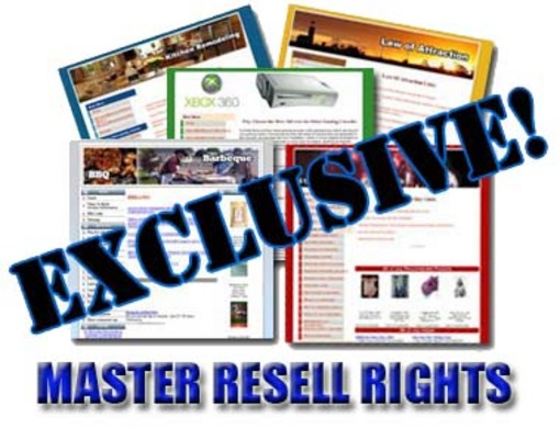 Product picture 10 Niche Sites with resell rights!